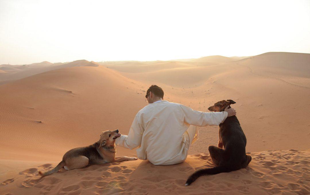 砂漠に生きる人と動物。「そして人生は続いていく」