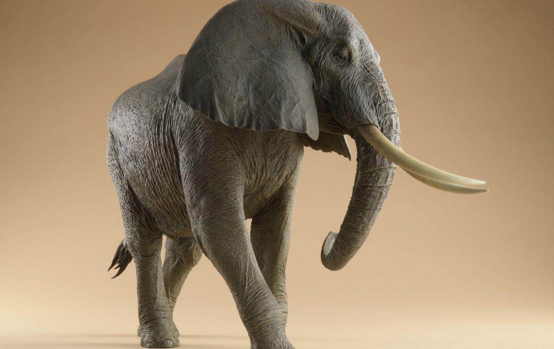 驚くほどリアルな粘土造形 アフリカゾウの骨格を作る