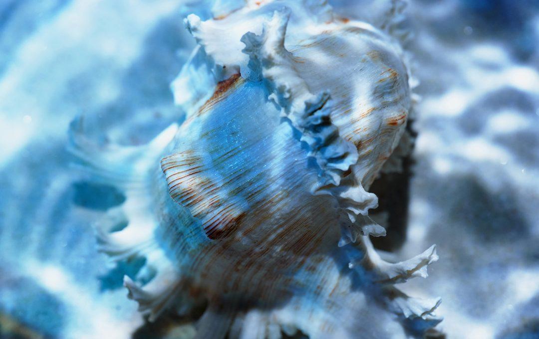 Photo Worksとして水面の煌めきを撮る