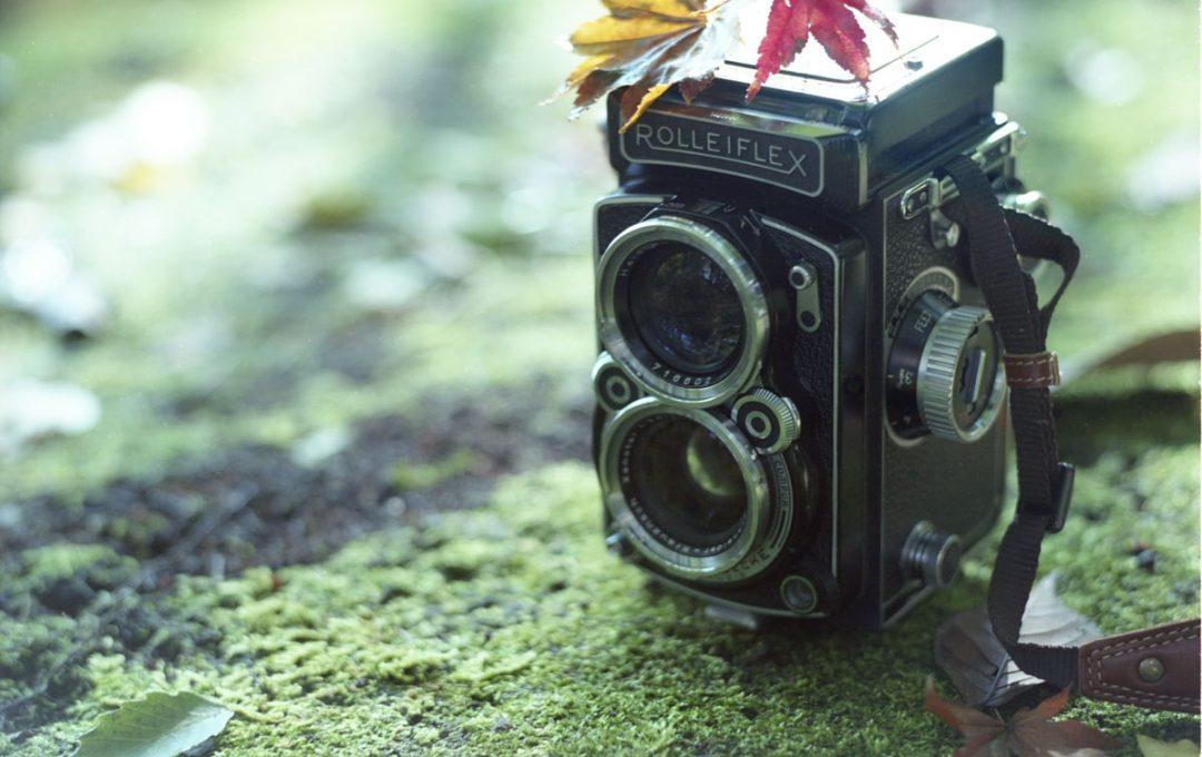 フィルム写真の魅力 〜中判フィルムカメラで撮られた写真が心に残る〜