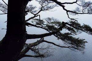 風景写真のハウツー「レアな現象そのものは平凡な被写体にすぎない」